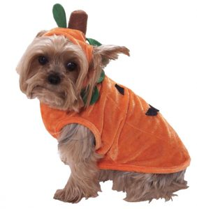 64859-pumpkin-pet-costume-large