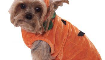 64859-pumpkin-pet-costume-large